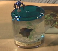 The Hearthstone Beta Fish